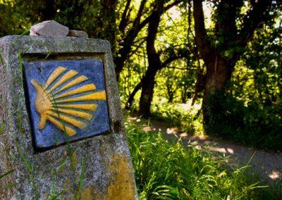 Camino de Santiago Costero